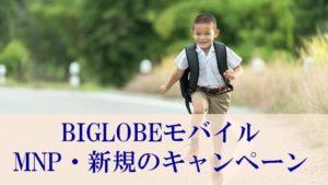 BIGLOBEモバイルの乗り換え(MNP)キャンペーン【キャッシュバックはいくら!?】