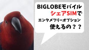 BIGLOBEモバイルのシェアSIMでエンタメフリーオプションは利用できる?