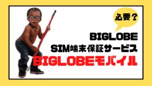 BIGLOBEモバイルの「BIGLOBE SIM端末保証サービス」は必要?